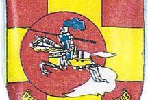 Companhias de Cavalaria CCS Moçambique