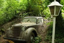 vintage & rusty cars / by Gianni Benini