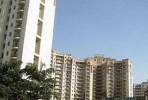2bhk apartments for rent in gurgaon