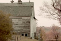 farms / by Marci Welcker