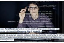 Software Developer Jobs / Browse here for our latest roles in Software Development...