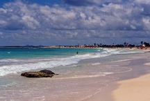St. Martin Vacation / by Carly Chrisco