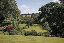 Gorgeous gardens in Devon