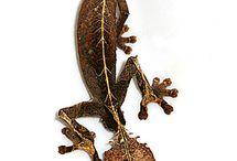 Reptiles & Amphibians / by Maureen Sternlieb
