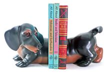 Dachshunds... Dogs Art and Items... / by Abufa