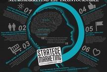 NeuroMarketing / Les avancées de la neuroscience mélangées au marketing. http://www.StrategeMarketing.com