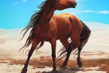 Mysterial Horses