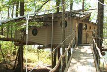 Facilities-Tree House