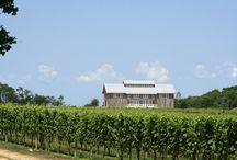 Vineyards & Wineries on the North Fork / Vineyards & Wineries on the North Fork of Long Island, New York