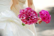 Fuchsia Wedding / Wedding Design / by Jessica Farber