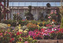 Garden MONDOVERDE Esterno / Nel garden troverete tutto per la sistemazione e la cura degli esterni. Un sapiente assortimento di arredi, pavimentazioni, fontane da giardino e tanti altri elementi che vi ispireranno su come rinnovare i vostri spazi, grandi o piccoli che siano, per realizzarli con personalità e gusto.