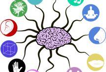 Neuroplastisity / Brain change