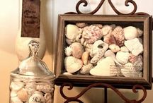 Addicted to Sea Shells / by Diane Drake