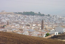 Andalusia / by Travel Different