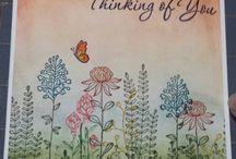 Cards - Flowering Fields stamp set
