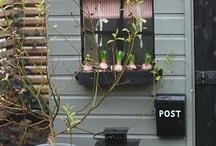 Tuin / Leuke ideen voor eigen tuin.