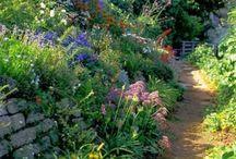 English Gardens and Such / by Jenn @ Good Job Jenn .com