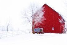 A Barn For All Seasons / barns / by Andi Kuck
