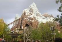 Disney World Theme Park / by Kid Friendly Family Vacations