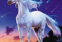 Licornes et chevaux
