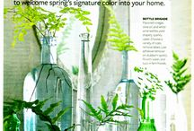 Natural Home / Great Ideas for Creating a Natural Home / by Nature's Crib