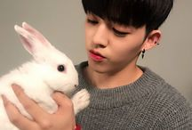 S.coups