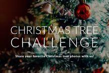 Fun Photo Challenges