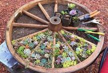 Jardinagem Biológica