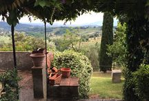 2015 Lucca Studentessa Matta Italian Language Program / We had so much fun on the 2014 Lucca Program in Tuscany that I will be repeating the experience again in September 2015! Come with me!