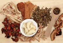 Astragalus / all about the astragulus