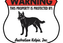 Australian Kelpie Signs and Pictures / Warning and Caution Australian Kelpie Signs. https://www.signswithanattitude.com/australian-kelpie-signs.html