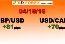 Daily Forex Profits Performance 04/18/16