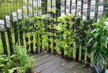 plastc bottle gardens