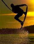 Hippsy 2012 wakeboard