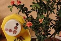 miniature fiori tutorial
