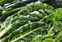Méregtelenítési Módszerek / Ön végez valamilyen tavaszi vagy őszi méregtelenítési kúrát alkalmanként vagy rendszeresen ?