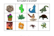 Animal Habitats / Books, crafts, songs, lessons, printables and activities for an animal habitat theme for preschool