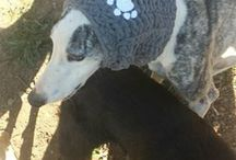 bufandas cuello crochet para perro / cuellos de crochet para galgos