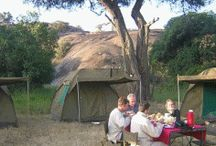 Tanzania Wildlife Safari Adventures