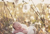 Newborn pictures / by LaNae Matousek