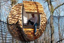 Sal's Tree House / Ideas for Sal's tree house