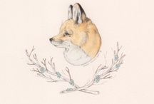 Fox / Rävar