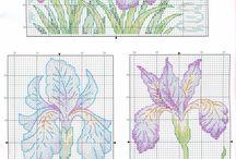 цв - ирисы, тюльпаны, ландыши, лилии