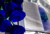 Flowers + Bible Verses / Floral Scriptures Photos and Art / by Tina Connor