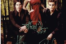 Vampire Diaries  / by Lora Renee
