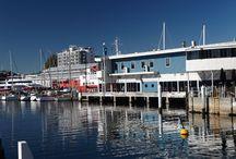 Discover - Tasmania, Australia