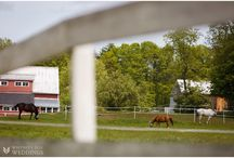 Rustic Tented Farm Barn Wedding