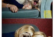 Face Swaps & Funny Photos
