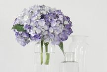 Flowers and florals / A selection of my favourite flower displays, perfect for any gorgeous home interior.