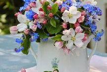 élő virág